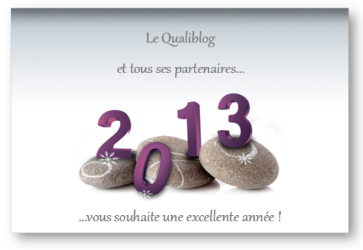 Qualiblog - Voeux 2013
